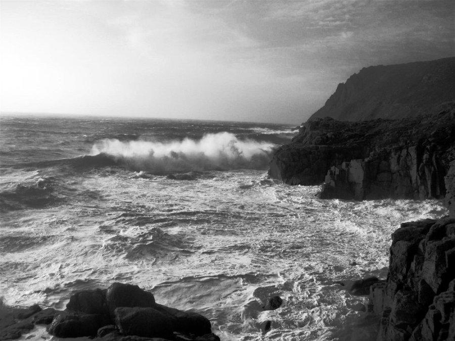 Wild Sea by Tom Corser