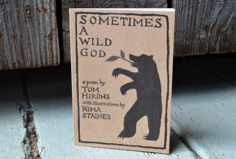 SOMETIMES A WILD GOD – the book