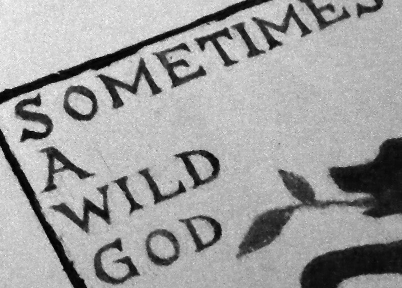 Coming very soon – the SOMETIMES A WILD GOD book!